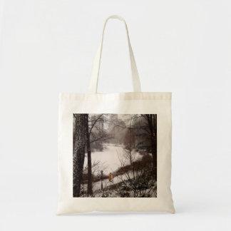 Uma caminhada em torno da lagoa em um dia de bolsa tote