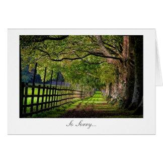 Uma caminhada no parque - as desculpas as mais hum cartao