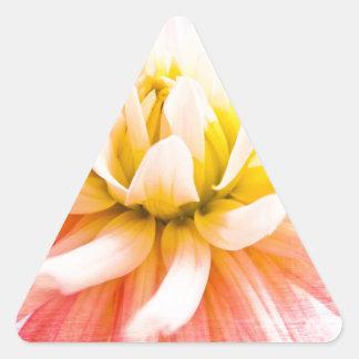 Uma flor da dália do verão na textura de madeira adesivo triangular
