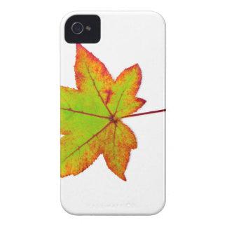 Uma folha de bordo colorida no outono no branco capa para iPhone 4 Case-Mate