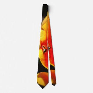 Uma foto escondida do amigo gravata