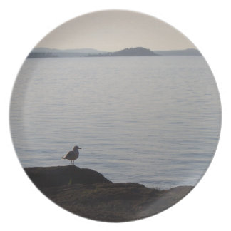 Uma gaivota sonha louça de jantar