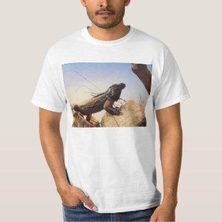 Uma iguana do rinoceronte examina seu domínio camiseta