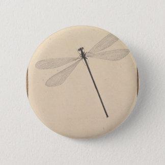 Uma libélula, por Nicolaas Struyk, cedo 18o C. Bóton Redondo 5.08cm