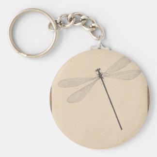 Uma libélula, por Nicolaas Struyk, cedo 18o C. Chaveiro