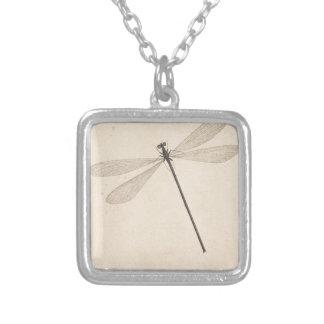 Uma libélula, por Nicolaas Struyk, cedo 18o C. Colar Banhado A Prata