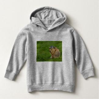 uma marmota sociável no Hoodie do pulôver da
