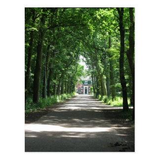 Uma pista holandesa em Forrest no cartão da foto