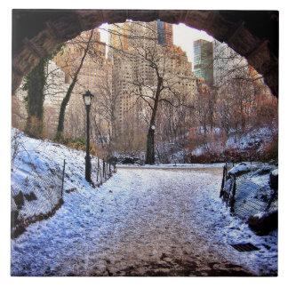 Uma ponte do Central Park no inverno