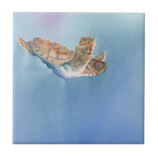 Uma tartaruga de mar do vôo das tartarugas