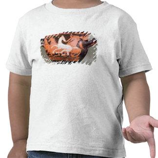 Uma vermelho-figura krater do sino camisetas