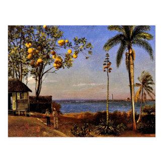 Uma vista nos Bahamas, pintura de Albert Bierstadt Cartão Postal