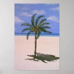 Única palmeira posteres