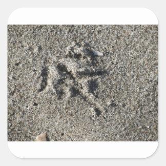 Única pegada do pássaro da gaivota na areia da adesivo quadrado