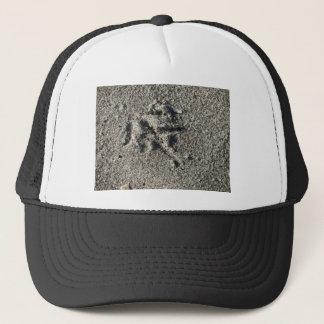 Única pegada do pássaro da gaivota na areia da boné