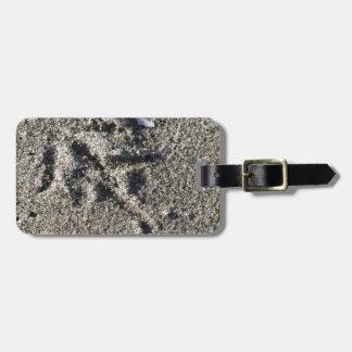 Única pegada do pássaro da gaivota na areia da etiqueta de bagagem