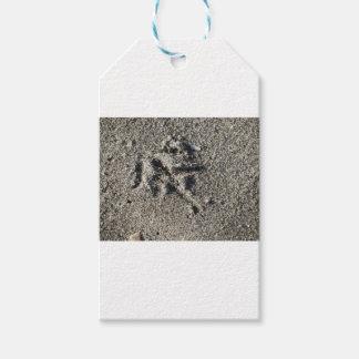 Única pegada do pássaro da gaivota na areia da etiqueta para presente