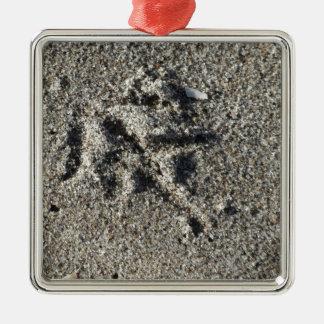 Única pegada do pássaro da gaivota na areia da ornamento de metal
