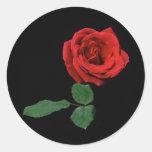 Única rosa vermelha adesivo redondo