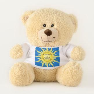 Ursinho De Pelúcia Urso de ursinho das bênçãos da luz do sol