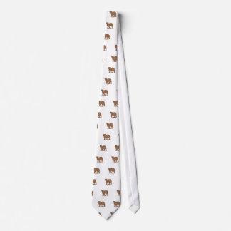 Urso bonito gravata