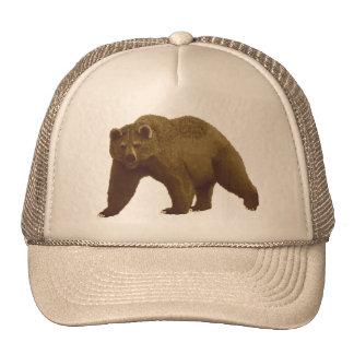 Urso de Brown Boné