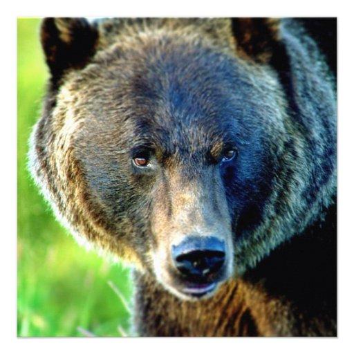 Urso de Brown Convites Personalizados