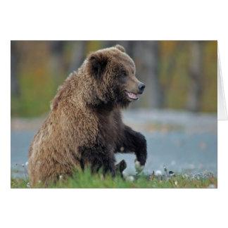 Urso de Brown do Alasca em Kenai NWR Cartão Comemorativo
