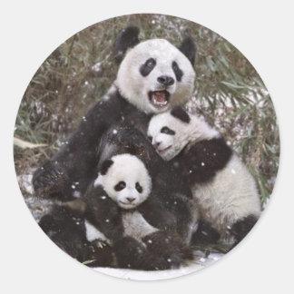 Urso de panda adesivo redondo