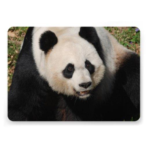 Urso de panda convite