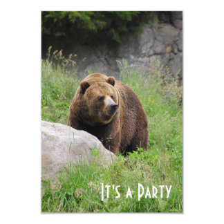 Urso de Washington Brown - convite de festas