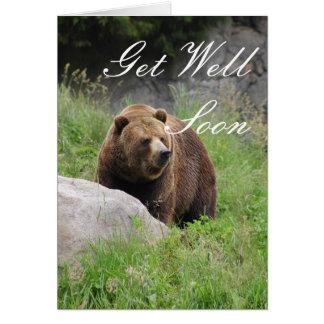 Urso de Washington Brown - obtenha o cartão bom