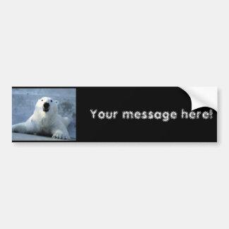 Urso polar adesivo para carro