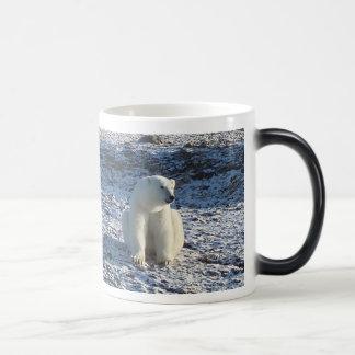 Urso polar ártico, frio ártico caneca mágica
