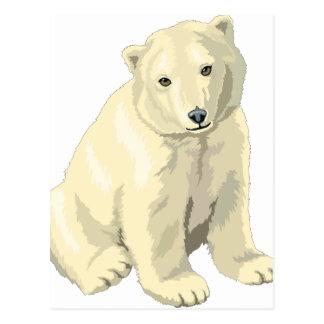 Urso polar peluches cartão postal