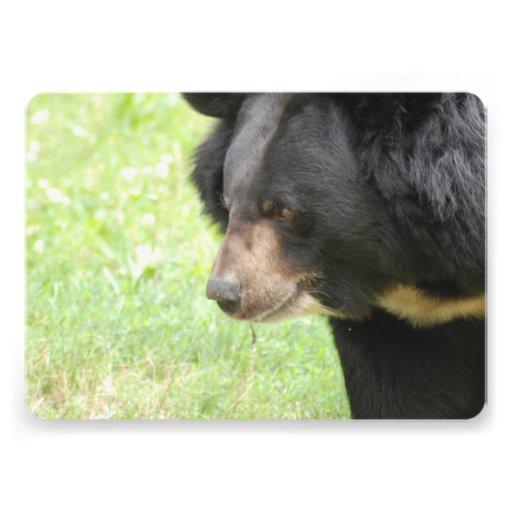Urso preto convite personalizados