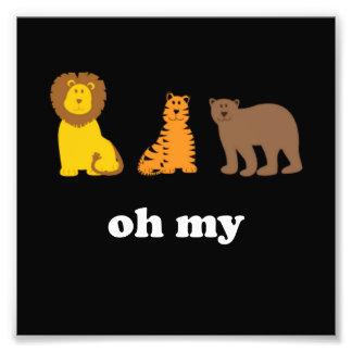 Ursos dos tigres dos leões oh meus impressão de foto