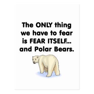 Ursos polares do medo próprio cartão postal