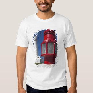 Uruguai, departamento de Rocha, La Paloma. Papai T-shirts