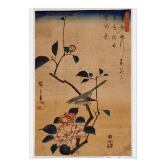 Utagawa Hiroshige, camélia e toutinegra de Bush, Pôster