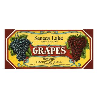 Uvas do lago Seneca, arte da etiqueta da caixa da  Planfeto Informativo Colorido
