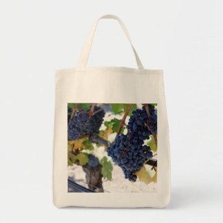uvas noir de pinot no bolsa da videira