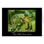 Uvas para vinho de Chasselas em Mont-Sur-Rolle Cartao