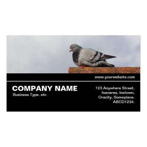 V3 incompleto 041 - pombo do bom dia modelos cartões de visita