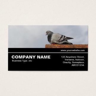 V3 incompleto 041 - pombo do bom dia cartão de visitas