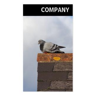 V encabeçamento - pombo do bom dia modelo cartoes de visitas
