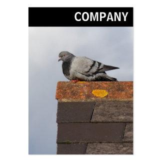 V encabeçamento - pombo do bom dia cartão de visita grande
