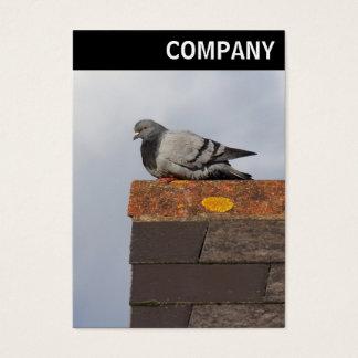 V encabeçamento - pombo do bom dia cartão de visitas