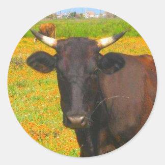 Vaca Adesivo Em Formato Redondo