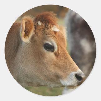 Vaca do jérsei adesivos redondos